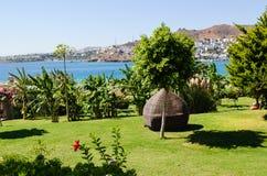 在绿色庭院的热带看法 库存照片