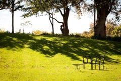 在绿色庭院里布置的小野餐桌 免版税库存照片