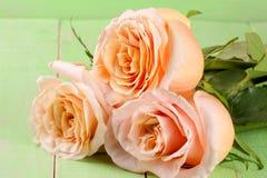 在绿色木背景的三朵新鲜的米黄玫瑰 库存照片