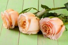在绿色木背景的三朵新鲜的米黄玫瑰 免版税图库摄影