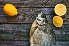在紫色木背景的各式各样的鱼 免版税图库摄影
