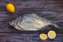 在紫色木背景的各式各样的鱼 免版税库存图片