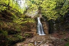 在绿色木头的瀑布 库存图片