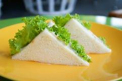 在黄色板材的金枪鱼三明治 免版税库存图片