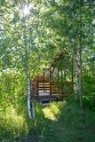 在绿色树中的眺望台 免版税库存图片