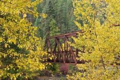 在黄色树之间的桥梁 库存图片