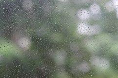 在绿色树背景玻璃和Bokeh的雨珠  免版税图库摄影