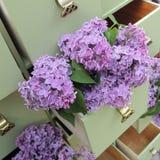 在绿色梳妆台抽屉的淡紫色花 库存照片