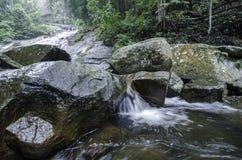 在绿色森林湿和生苔石头包围的热带河的平静的图象 库存图片