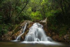 在绿色森林的瀑布 库存图片