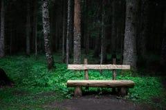 在绿色森林附近的单独老长木凳 库存图片