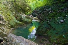 在绿色森林,用青苔盖的石头中间的山河 免版税库存图片