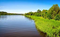 Summer湖 免版税图库摄影