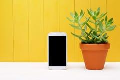 在绿色植物旁边的手机罐的 库存照片
