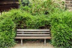在绿色灌木中的长木凳 库存图片