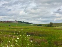 在绿色牧场地的云彩 免版税库存照片