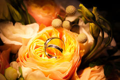 在黄色玫瑰的婚戒 库存图片