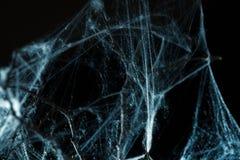 在黑色的抽象Spiderweb 免版税库存照片