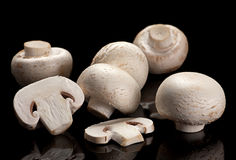 在黑色的白色蘑菇 免版税库存图片
