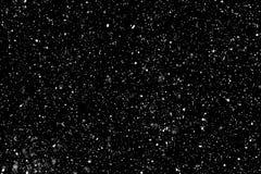 在黑色的真正的落的雪 免版税库存图片