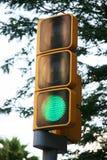 在绿色的红绿灯 库存照片