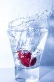 在黑色的草莓飞溅 免版税库存照片