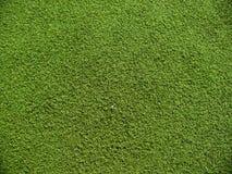 在绿色的足球场草 免版税库存照片