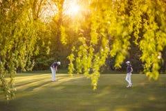 在绿色的高尔夫球运动员夫妇 免版税库存图片