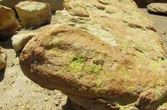 在黄色石头的绿色青苔 图库摄影