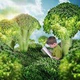 在绿色硬花甘蓝风景的健康儿童阅读书 图库摄影