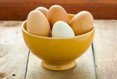 在黄色碗里面的鸡蛋 库存图片