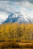 在黄色秋天叶子的积雪覆盖的山 图库摄影