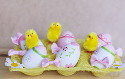 在黄色篮子的桃红色和紫色复活节彩蛋与黄色鸡 库存照片