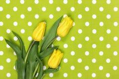在绿色纺织品的郁金香 库存照片