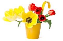 在黄色罐的五颜六色的郁金香 免版税库存图片
