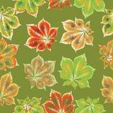 在绿色背景的一片栗子叶子 无缝的模式 库存图片