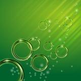 在绿色背景的发光的圈子在sunligh 库存图片