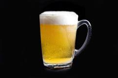 在黑色背景的啤酒 库存图片