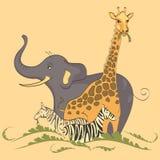 在黄色背景的大草原动物 大象,长颈鹿,斑马 库存图片