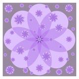 在紫色背景的淡紫色花 免版税库存图片