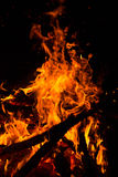 在黑色背景的火火焰 图库摄影