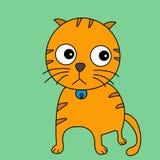 在绿色背景的猫 免版税库存图片