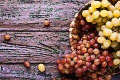 在紫色背景的红色和白葡萄 免版税库存图片