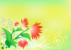 在绿色背景的红色花 图库摄影