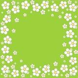 在绿色背景的花卉框架 向量 免版税库存照片