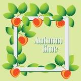 在黄色背景的苹果 苹果秋天对光检查袋装花瓶的构成干燥叶子 库存图片