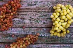 在紫色背景的葡萄 库存照片
