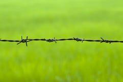 在绿色背景的铁丝网 库存照片