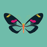 在绿色背景的蝴蝶摘要 免版税图库摄影