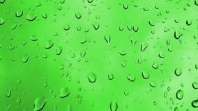 在绿色背景的Waterdrops 股票视频